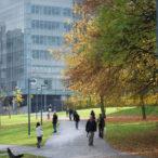 Campus Etterbeek Herfst
